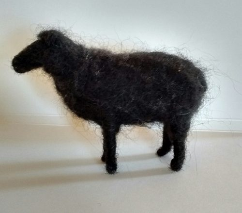 nf black sheep 1