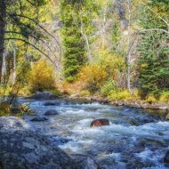 Original Landscape Photography by Peter Herzog | Fine Art Art on Canvas | Montana Mountain Stream - Limited Edition 1 of 5